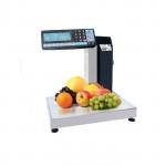 Весы с печатью этикеток МАССА-К МК-15.2-RL10-1