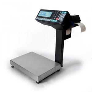 Весы с печатью этикеток МАССА-К МК-32.2-RP10